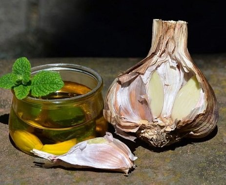 Side Effects and Benefits of Eating Raw Garlic