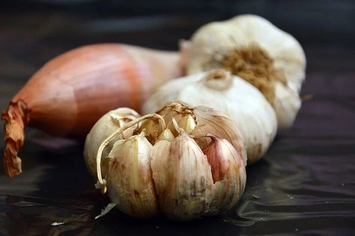 Is Garlic a vegetable